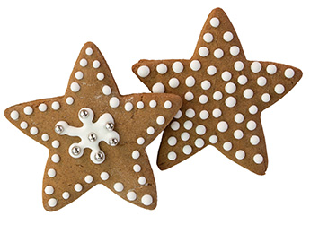 Star Spiced Cookies