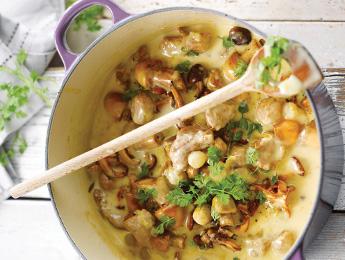 Creamy Pork & Mushroom Stew